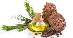 Cedarwood Oil - Essential Oil Uses & Cedarwood Oil Toxicity